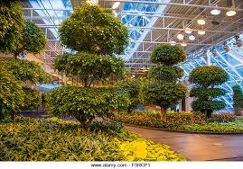 Botanical Gardens Calgary Mulderranch