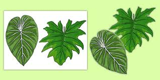 holly leaf templates free printable patterns to cut out leaves