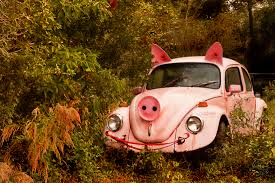 punch buggy car punch buggy pig no punch backs u2013 liz mccafferty