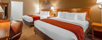 Comfort Inn San Francisco Airport Lodging In South San Francisco Accommodations