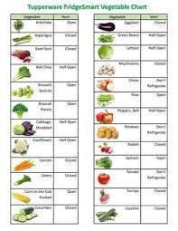 herb chart fridgesmart vegetable fruit herb chart 2016 by jan woods issuu