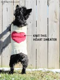 sweater with dogs on it knitted sweaters to keep your pooch warm