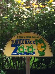 turtle back zoo light show 2017 the turtle back zoo west orange nj 4 hats and frugal