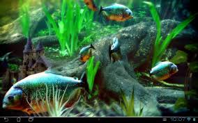 aquarium halloween piranha aquarium 3d lwp android apps on google play