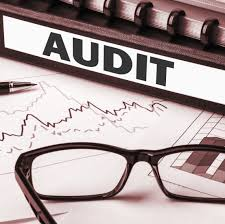 Irs Audit Red Flags Four Ways To Guarantee A Business Audit Business Com