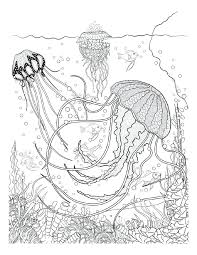 underwater dinosaurs coloring pages underwater coloring pages underwater sea creatures coloring pages