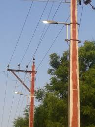 Solar Plant Lights by Green Electric Systems