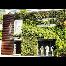 garden wall plants wonderful home design facade covered with outdoor plants combined