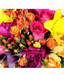 local florist delivery designer s choice in paul mn iron violets design studio