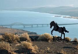 Washington wildlife images Wild horses monument washington jpg