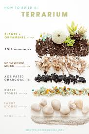 learn how to make terrariums for your wedding terraria wedding