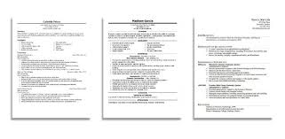 Examples Of Professional Resumes by Professional Resume Writer In Burleigh Heads Jerrellniu Com