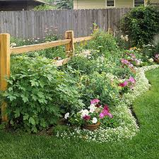 vegetable garden border ideas cheap edging top awesome bed and