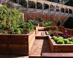 Redwood Planter Boxes by Redwood Planter Box Houzz