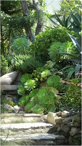 modern backyard garden ideas to help you design your own little
