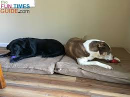see the diy no sew extra large dog bed that i made from a memory