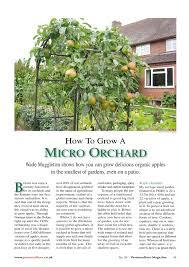 Best Landscape Orchards Images On Pinterest Orchards - Backyard orchard design