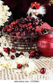 popcorn cranberry garland stock photos popcorn cranberry garland
