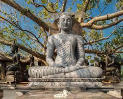 seema malaka colombo s serene buddhist island vihara ramblin boy