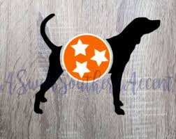 bluetick coonhound in tennessee blue tick hound etsy
