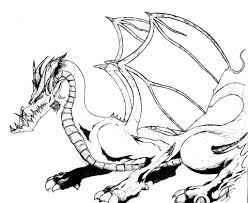 dragon coloring page chuckbutt com