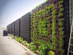 Wall Garden Kits by Gro Wall Pro Atlantis Australia