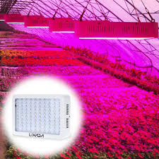 horticultural led grow lights lixada 300w 100 leds grow light full spectrum for indoor greenhouse