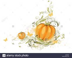 halloween stock background halloween pumpkin and floral ornament on a white background stock