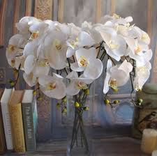 orchids for sale gnw white artificial flowers bulk silk orchids for sale