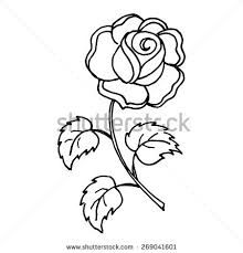 design flower rose drawing rose flower design element vector illustration stock vector 2018