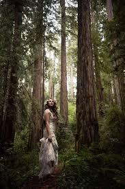 redwood forest wedding venue cecilia and craig s california redwood forest wedding denver