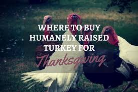 where to buy humanely raised turkey for thanksgiving guilt free