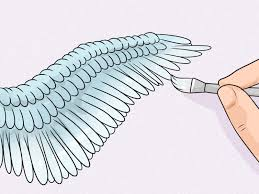 how to draw wings 12 steps with pictures wikihow