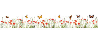 Butterfly Wall Decals For Nursery by Wallpops Poppies And Butterflies Border Wall Decal U0026 Reviews
