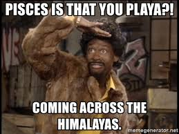 Pisces Meme - pisces is that you playa coming across the himalayas jerome