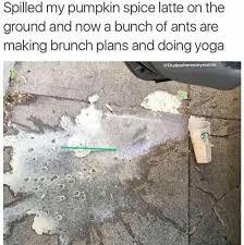 Pumpkin Spice Meme - 22 funny pumpkin spice memes because it s fall smosh