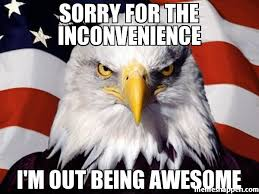 Memes About Being Sorry - sorry for the inconvenience i m out being awesome meme american