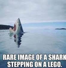 Inspirational Memes - inspirational memes top 34 of motivational memes
