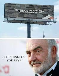 Sean Connery Memes - all the shingle ladies humour image internet meme james bond