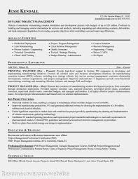 Technical Support Resume Summary A Sample Of A Resume For A Job Adjectives Essay Application Letter