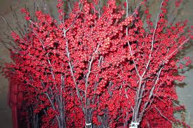 christmas at oney u0027s tree farm woodstock illinois 815 338 4108