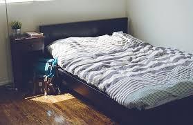 bail chambre chez l habitant louer une chambre dans un appart bon plan ou galère