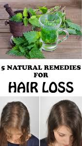 5 natural remedies for hair loss diyartcrafts