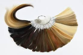hair color rings images Color rings for hair extensions hair compounds hair png