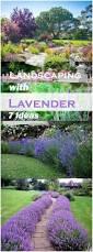 backyards beautiful landscaping with lavender 88 backyard