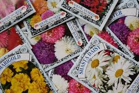 cheap seed packets vintage yot cheap chic may day or s day baskets