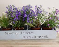 herbs planter herb planter wooden planter window box herb garden herbs