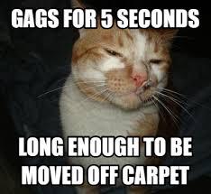 Vomit Meme - thanks bro clutch warning before the vomit came meme guy