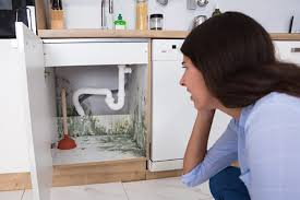 small kitchen sink and cabinet combo causes of mold in the kitchen and how to avoid it home