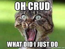 Kitty Cat Memes - oh crud what did i just do terrified kitty cat meme generator
